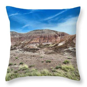 Petrified Forest National Park Throw Pillow