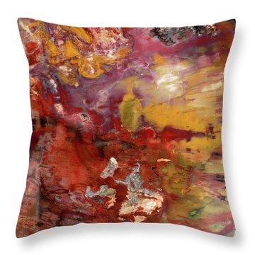 Petrified Wood Detail Throw Pillow