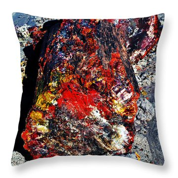 Petrified Wood Log Rainbow Crystalization At Petrified Forest National Park Throw Pillow by Shawn O'Brien