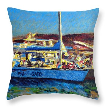 Pez Gato In Afternoon Sun Throw Pillow