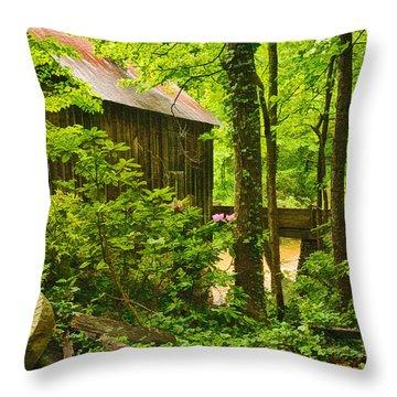 Pine Run Grist Mill Throw Pillow