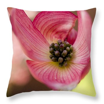 Pink Dogwood Throw Pillow