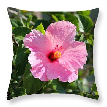 Single Pink Hibiscus Throw Pillow