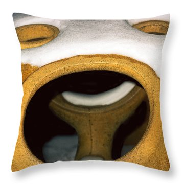 Throw Pillow featuring the photograph Please Open Wide by Kellice Swaggerty