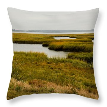 Plum Island Marshes In Autumn 1 Throw Pillow