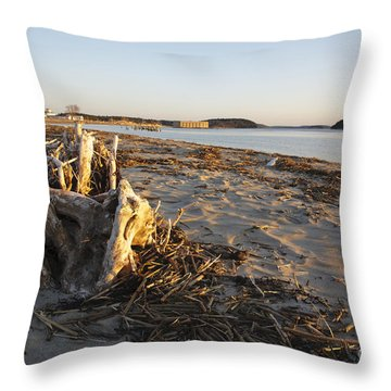 Popham Beach State Park - Phippsburg Maine Usa Throw Pillow by Erin Paul Donovan