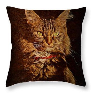 Portrait Of A Tramp Cat Throw Pillow