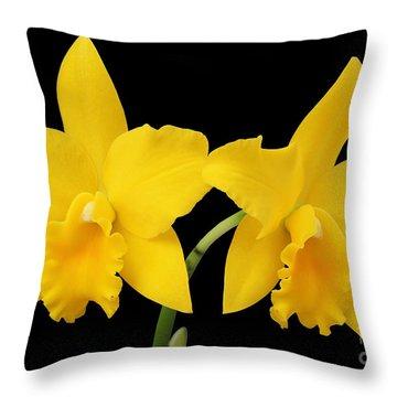 Potinara Shinfong Little Love #2 Throw Pillow