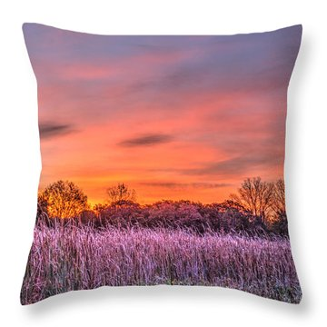 Illinois Prairie Moments Before Sunrise Throw Pillow