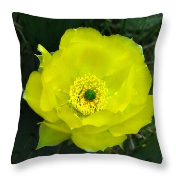 Prickly Pear Cactus Throw Pillow by William Tanneberger