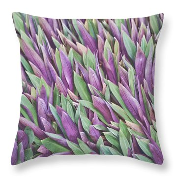 Purple And Green Throw Pillow by Holly Kempe