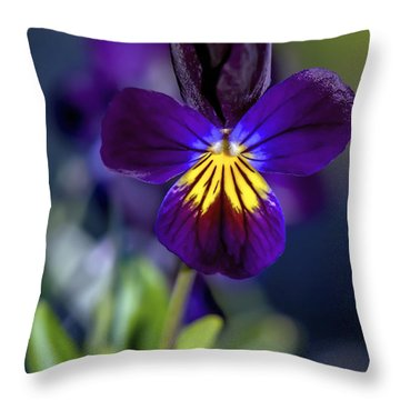 Purple Viola Throw Pillow