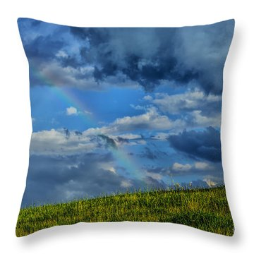Rainbow Over Pasture Field Throw Pillow by Thomas R Fletcher