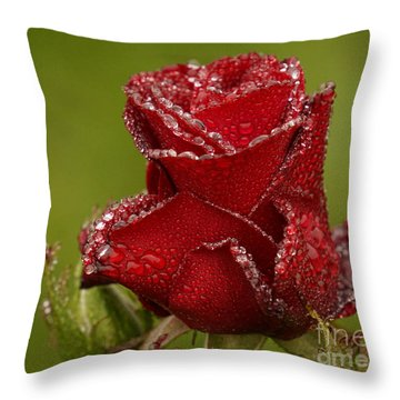 Raindrops On Roses Throw Pillow