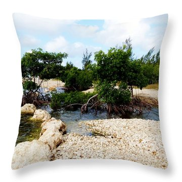Throw Pillow featuring the photograph Reclamation 6 by Amar Sheow