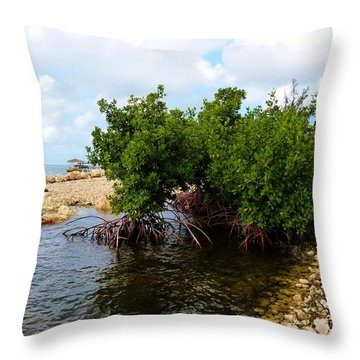 Throw Pillow featuring the photograph Reclamation 7 by Amar Sheow