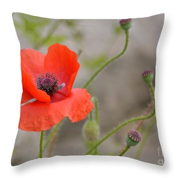 Throw Pillow featuring the photograph Red by Lisa L Silva