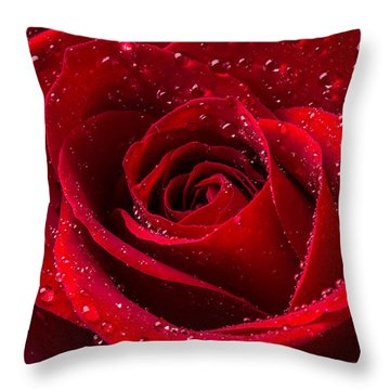 Red Rose With Dew Throw Pillow