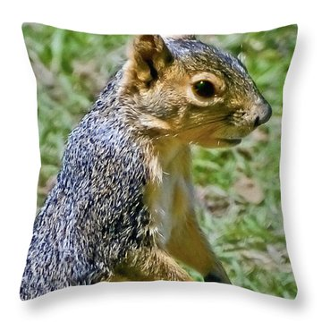Red Squirrel Throw Pillow by Bob and Nadine Johnston