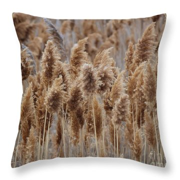 Wind Blown Redish Brown Plants Throw Pillow