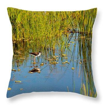 Reflection Of A Bird On Water, Boynton Throw Pillow