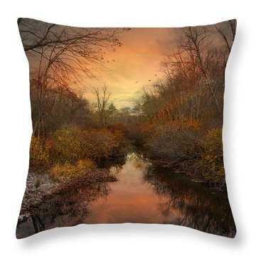Remains Of The Day Throw Pillow by Robin-Lee Vieira
