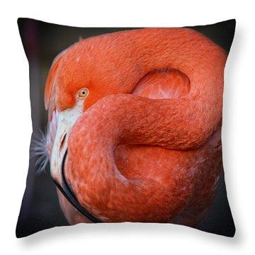 Resting Flamingo Throw Pillow