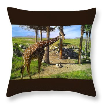 Throw Pillow featuring the photograph Reticulated Giraffe by Chris Tarpening