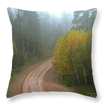 Rim Road Throw Pillow