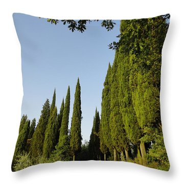 Road In Loppiano Throw Pillow