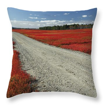 Road Through Autumn Blueberry Maine Throw Pillow by Scott Leslie