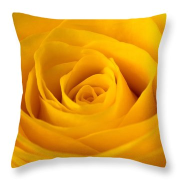 Rose Throw Pillow by Scott Carruthers