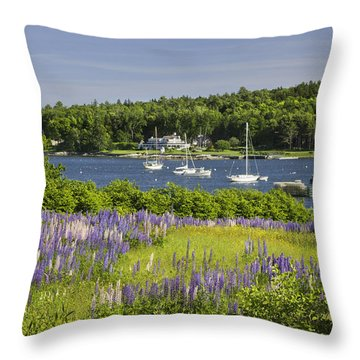 Round Pond Lupine Flowers On The Coast Of Maine Throw Pillow