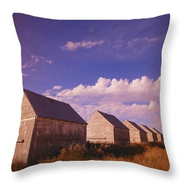 Row Of Old Farm Houses Throw Pillow by Kelly Redinger