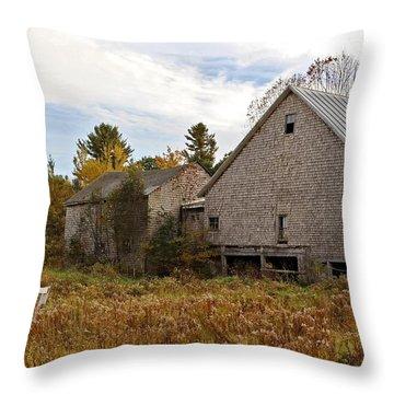 Rural View Throw Pillow