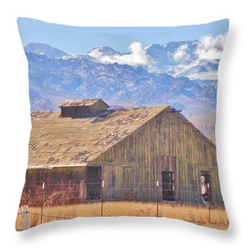 Rustic Rural Throw Pillow