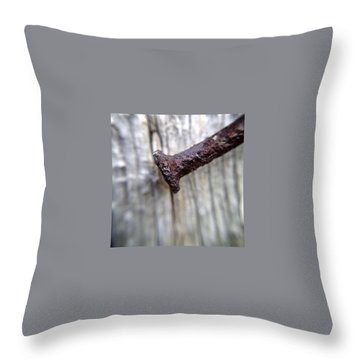 Rust Throw Pillows