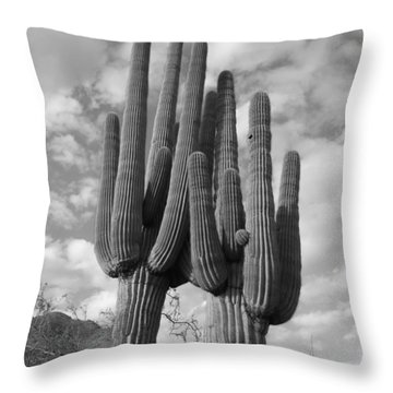 Saguaro Love Throw Pillow
