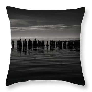 Salton Sea Piles Throw Pillow