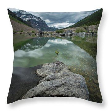 Scenes From Consolation Lake Throw Pillow