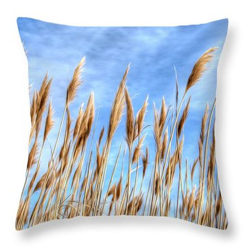 Sea Breeze Throw Pillow by Kelvin Booker