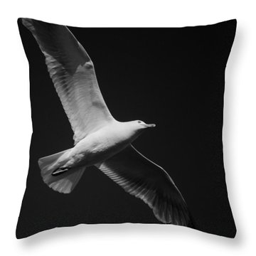 Seagull Underglow - Black And White Throw Pillow
