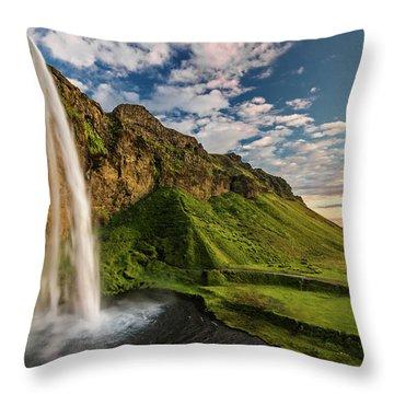 Fresh Water Throw Pillows