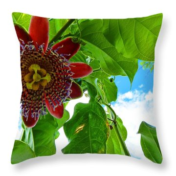 Throw Pillow featuring the photograph Serenity by Julia Ivanovna Willhite