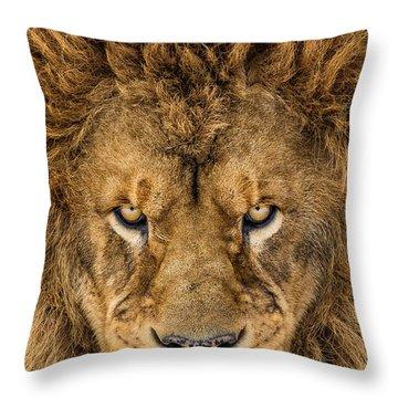 Gaze Throw Pillows