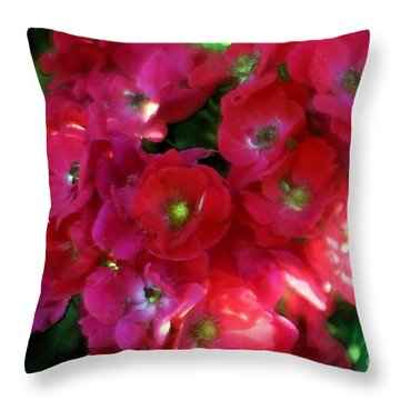 Throw Pillow featuring the photograph Shades Of Red by Mary Lou Chmura