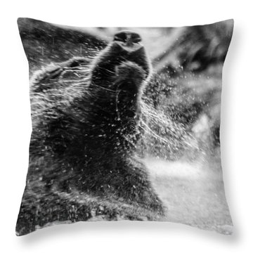 Shake Shake Shake Throw Pillow by Wade Brooks