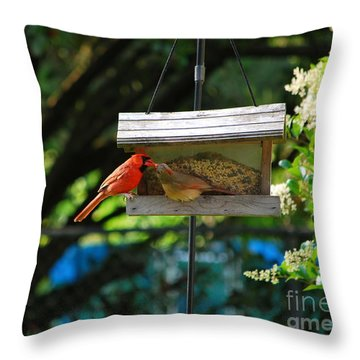 Throw Pillow featuring the photograph Sharing by Bob Sample