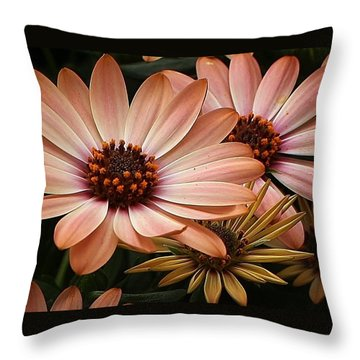 She Loves Me She Loves Me Not  Throw Pillow