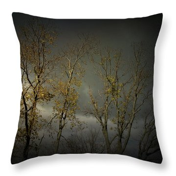 Shine 2 Throw Pillow by Cynthia Lassiter